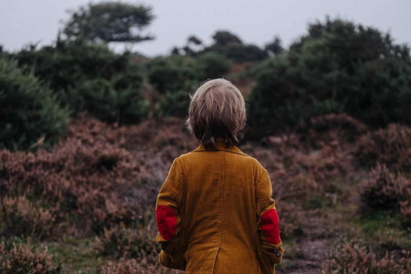 boy looking out at forest